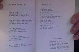 PK Dick poems