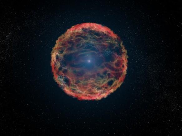 Supernova M81