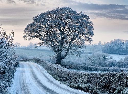 snow in Ireland
