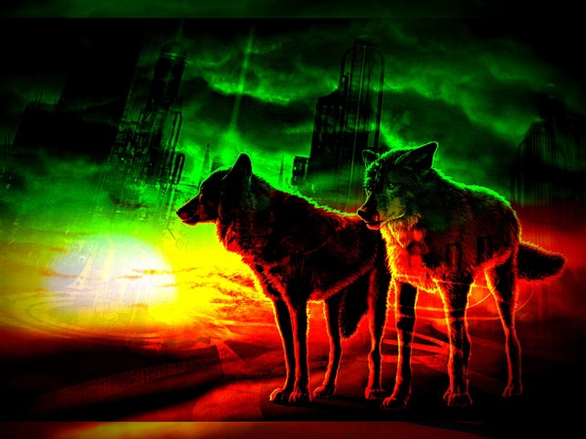 wolves-desert-sunset-wallpaper10_tracked6