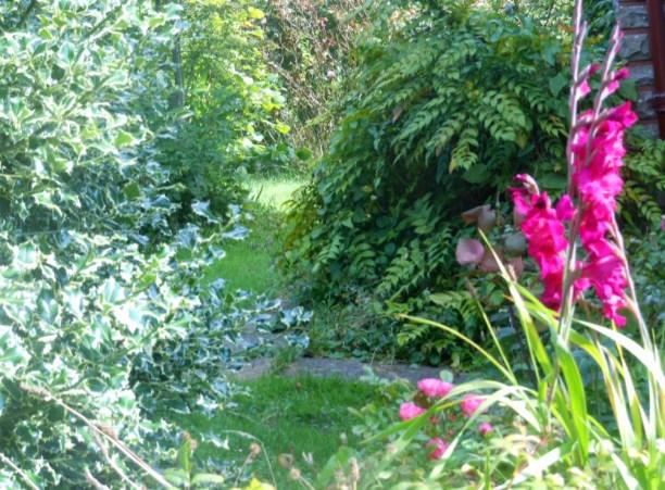 Galway garden path