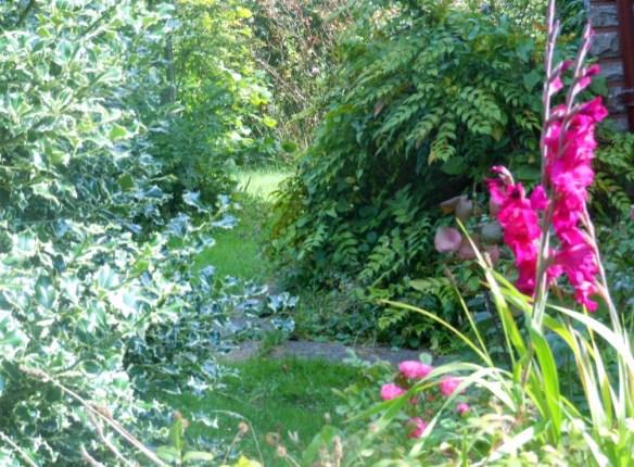Galway Garden