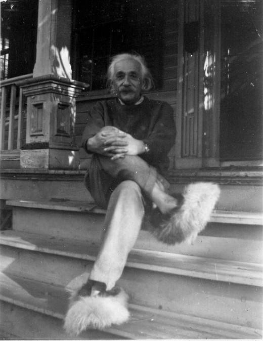 fuzzy Albert